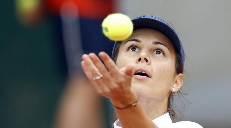 Чехкиня е следващата съперничка на Пиронкова