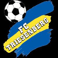 Тризенберг