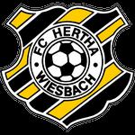 Херта Висбах
