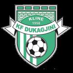 Дукагини