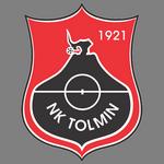 Толмин