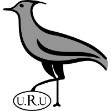 Уругвай (ръгби)