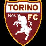 Торино (19)