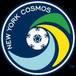 Ню Йорк Космос