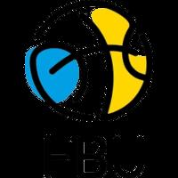 Украйна (баскетбол)