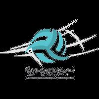 Иран (волейбол)