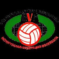 Беларус (волейбол)