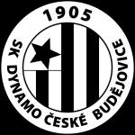 Чешке Будейовице (21)